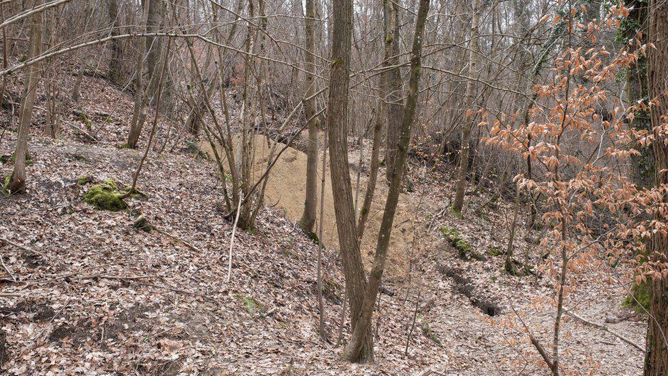 Тоннель Винтерберг спрятан в лесу