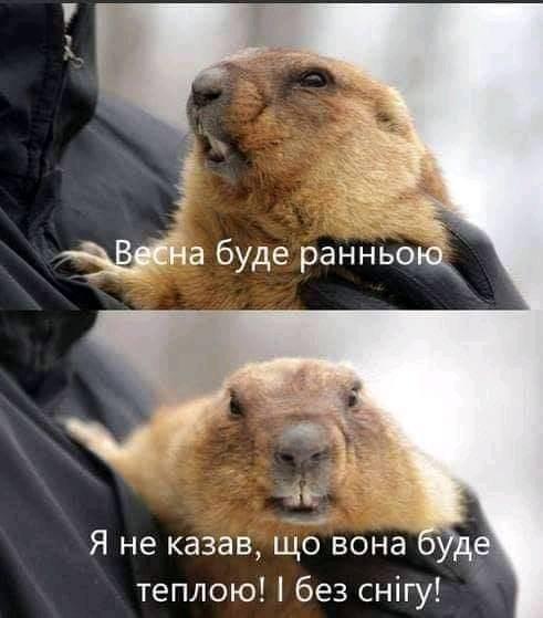 Мем про весну