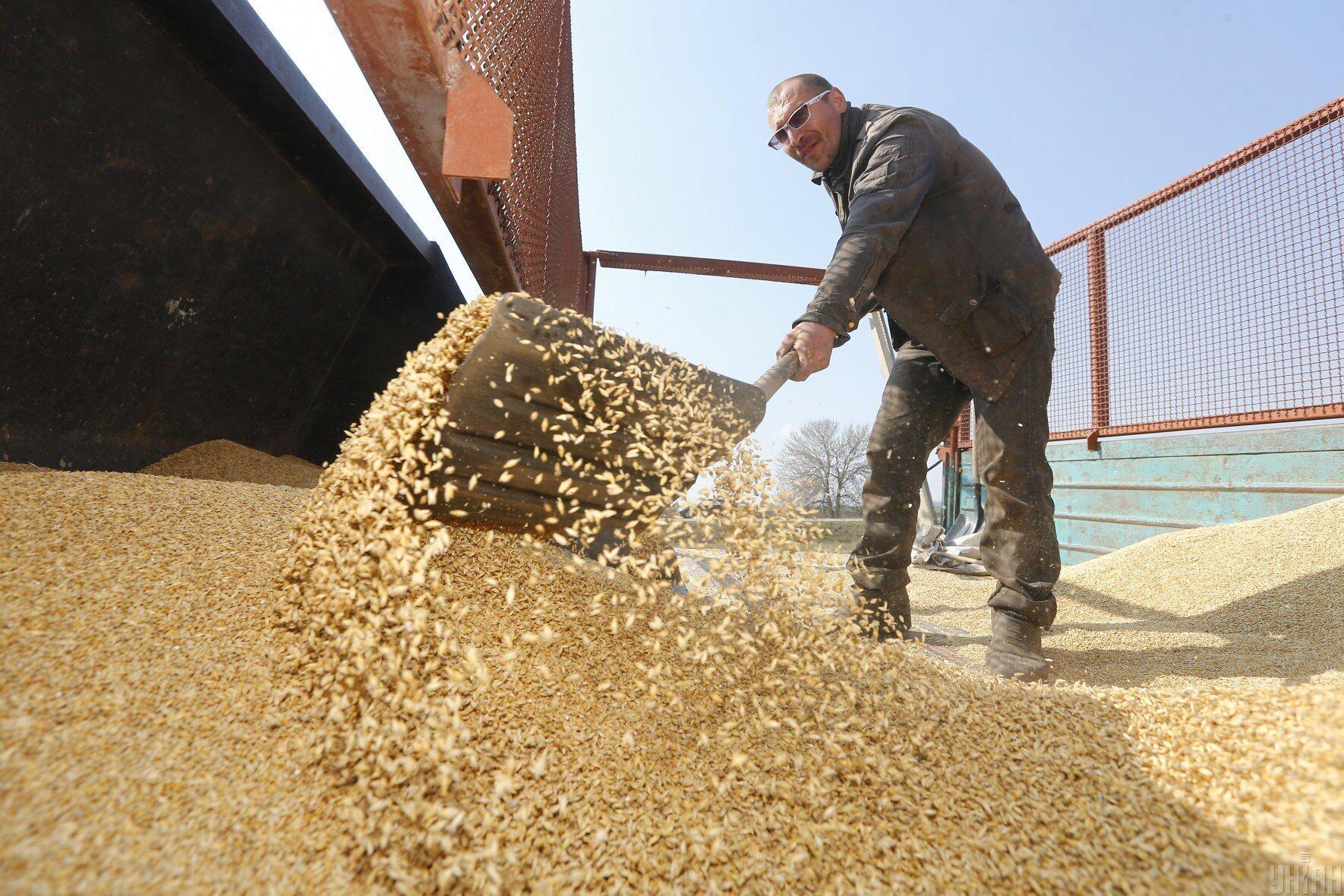 Минулорічний неврожай зернових – одна з причин зростання цін на продукти