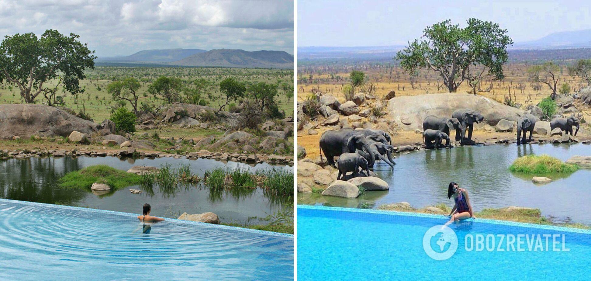 У Танзанії збудували особливе місце, де туристи можуть поплавати і насолодитись дикою природою.