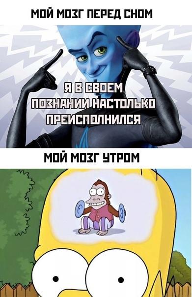 Мем про мозок