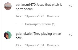 Пользователи раскритиковали качество газона