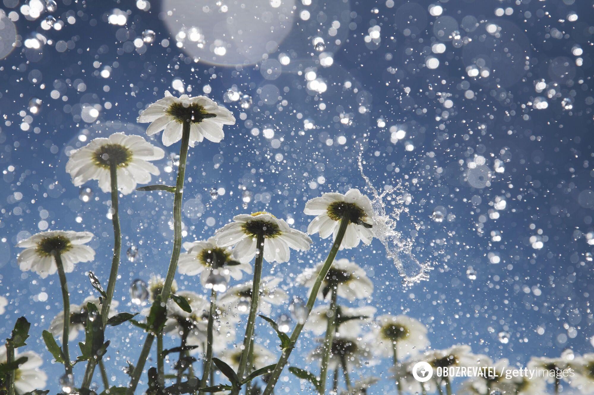 В Україні можливий мокрий сніг.
