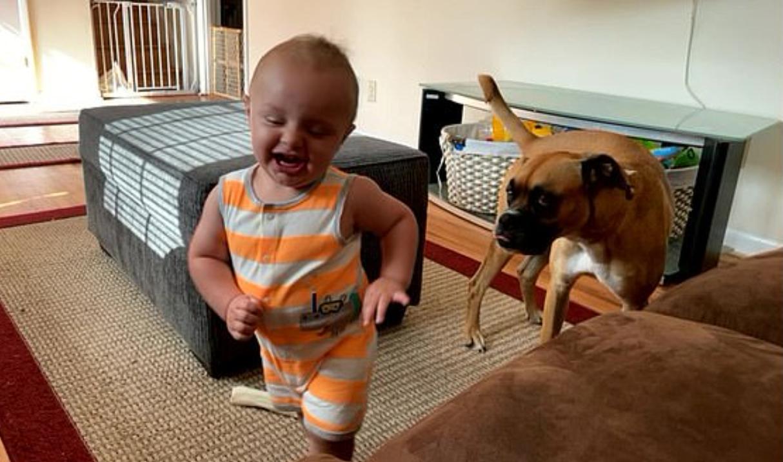 Ребенок показал собаке Белле, как нужно гоняться за своим хвостом