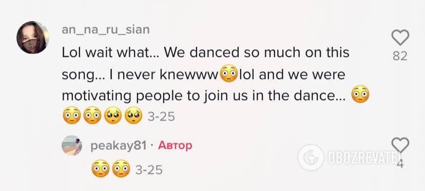 Пользователи удивились смыслу песни