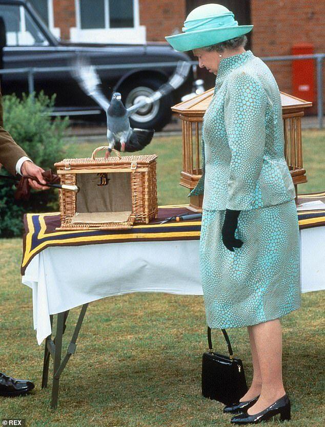 Королева Елизавета II позирует с гоночными голубями