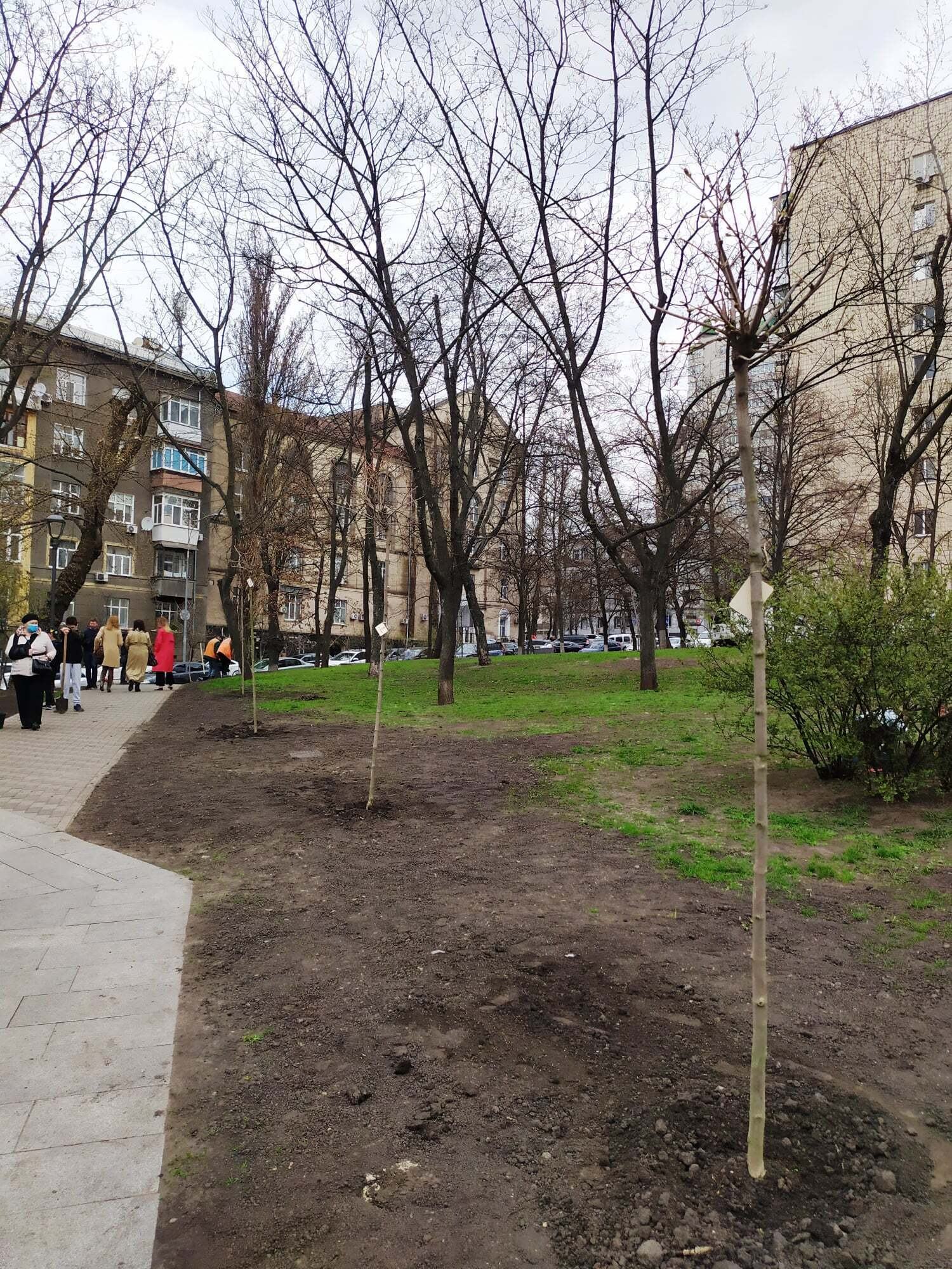 Сквер имени Марии Заньковецкой украсят сакуры и клены.