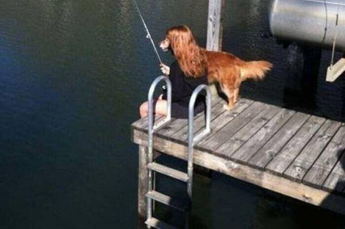 Незрозуміло, хто ж ловить рибу.