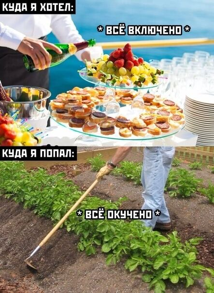 Мем про дачний сезон