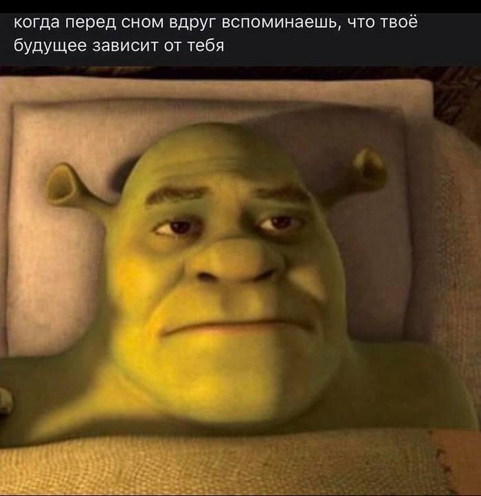 Мем о будущем