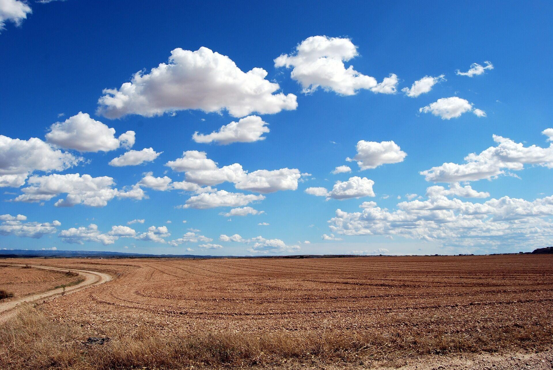 Синие облака плывут по небу – к теплой погоде, но с осадками