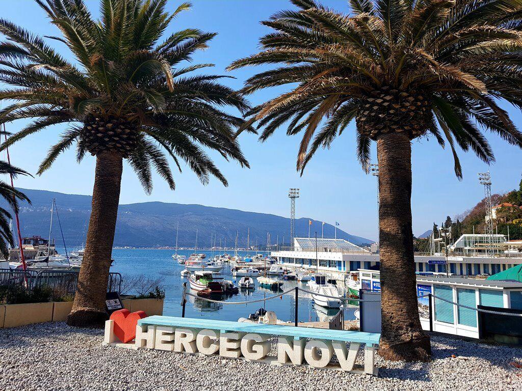 """Герцег Нові називають """"ботанічним садом Чорногорії"""""""