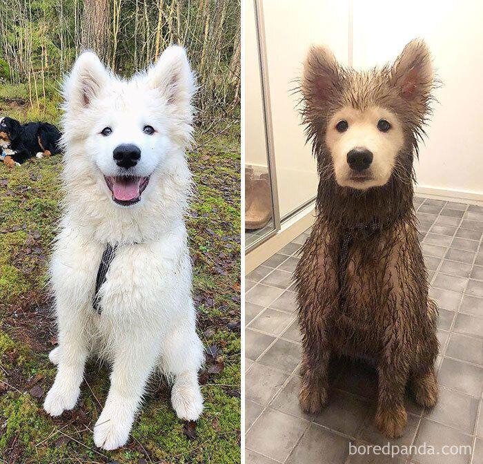 До та після прогулянки на природі