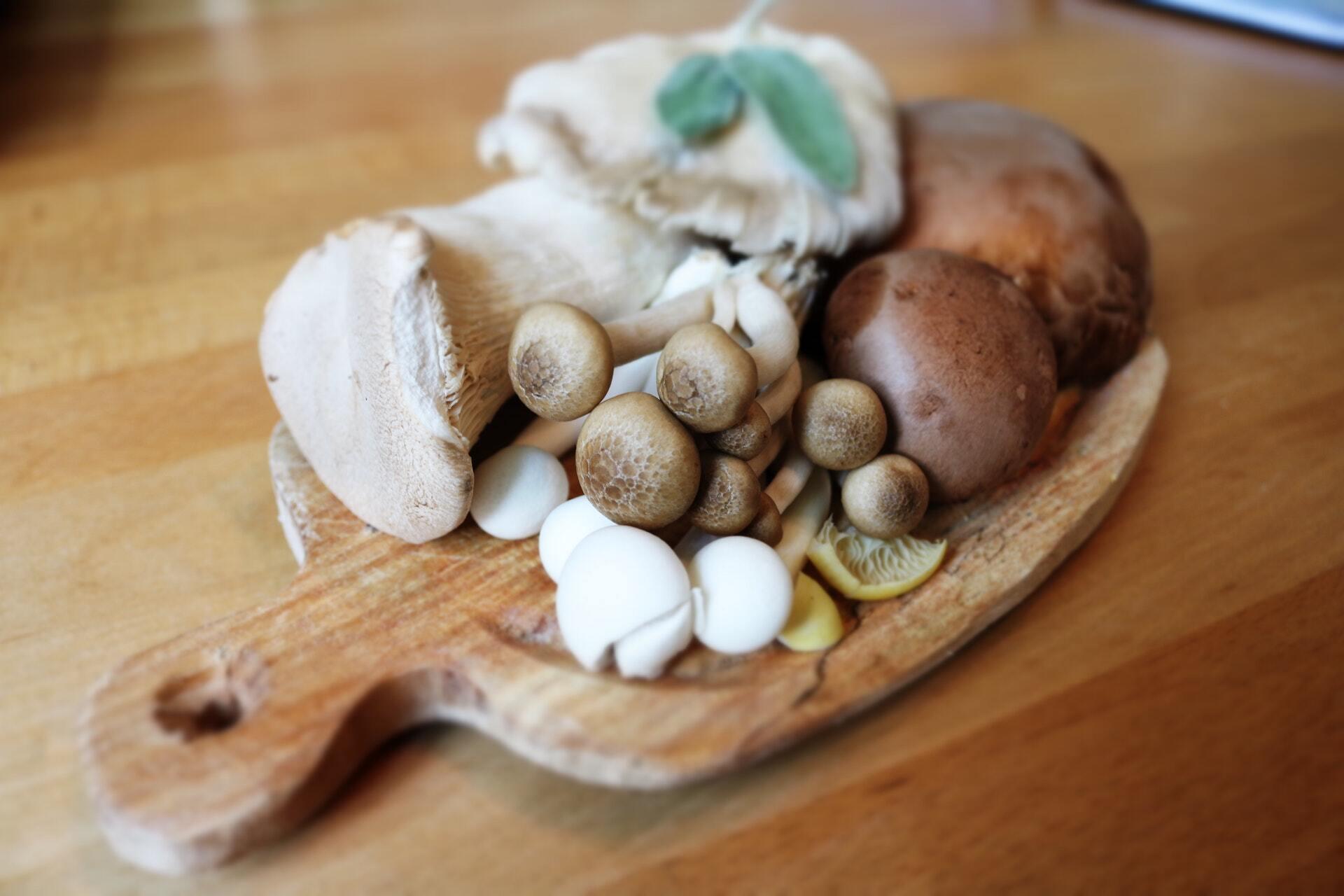 Грибы является основным пищевым источником эрготионеин