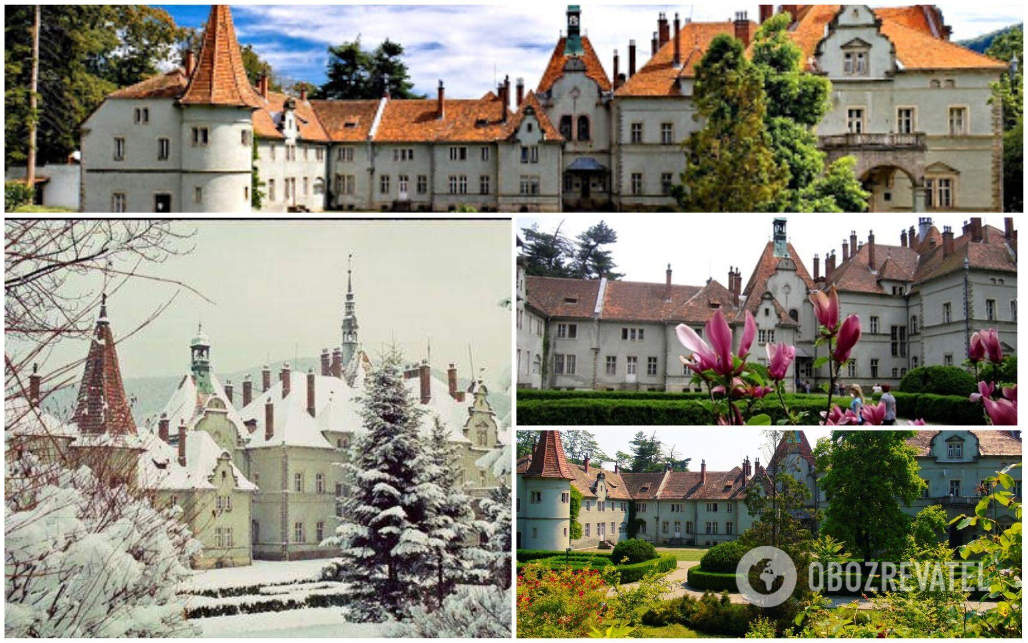 Этот замок ранее принадлежал аристократам Шенборнам