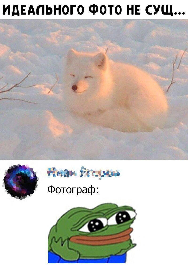 Мем о фото
