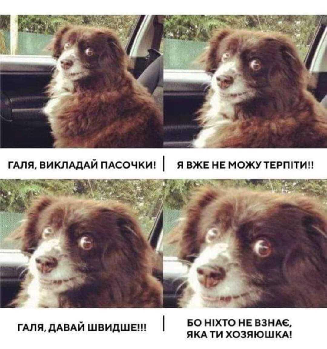 Мем о хозяйках на Пасху