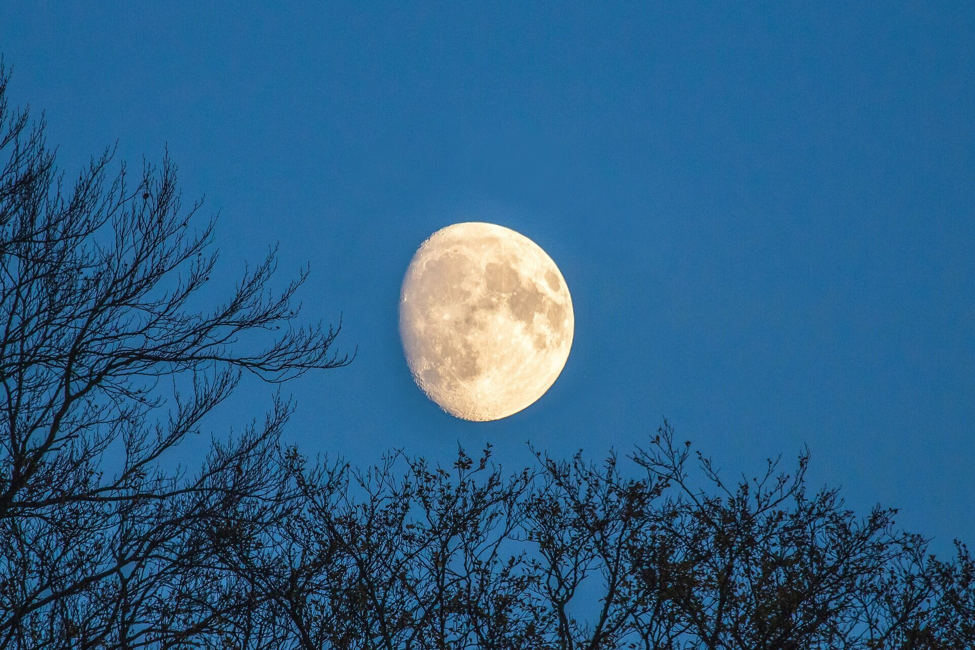 Считается, что фазы Луны могут влиять на рост и здоровье волос