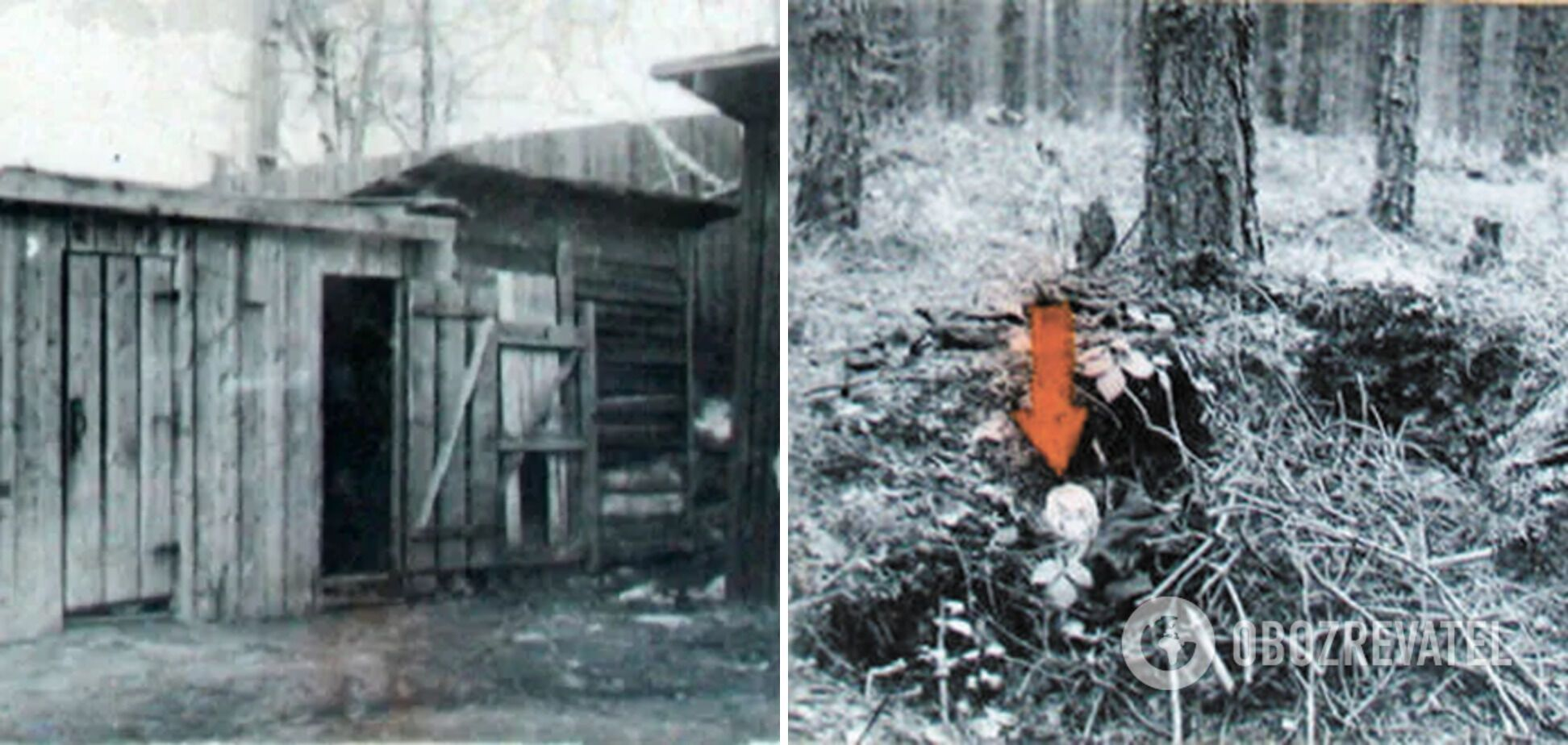 Один из туалетов, в выгребную яму которого убийца бросил свою жертву; других жертв маньяка находили в лесу