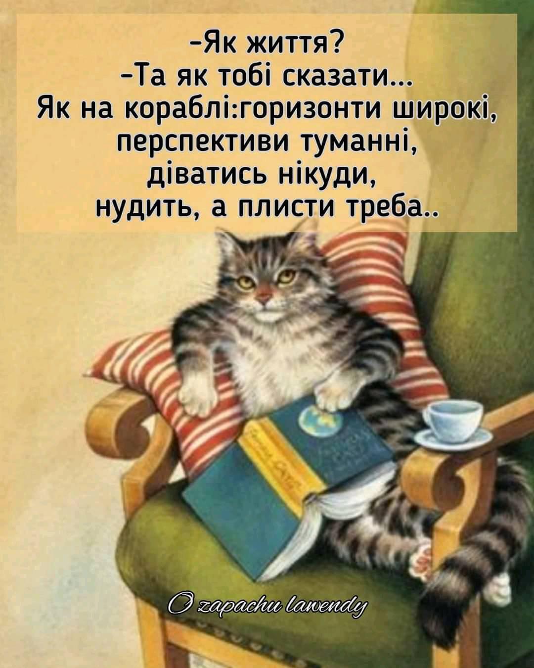 Мем о жизни