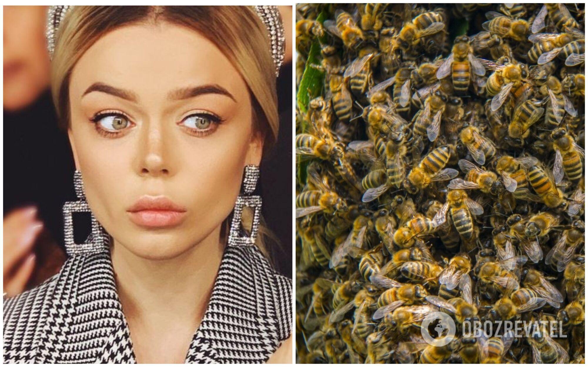 Алину Гросу пугают насекомые, а в особенности, пчелы