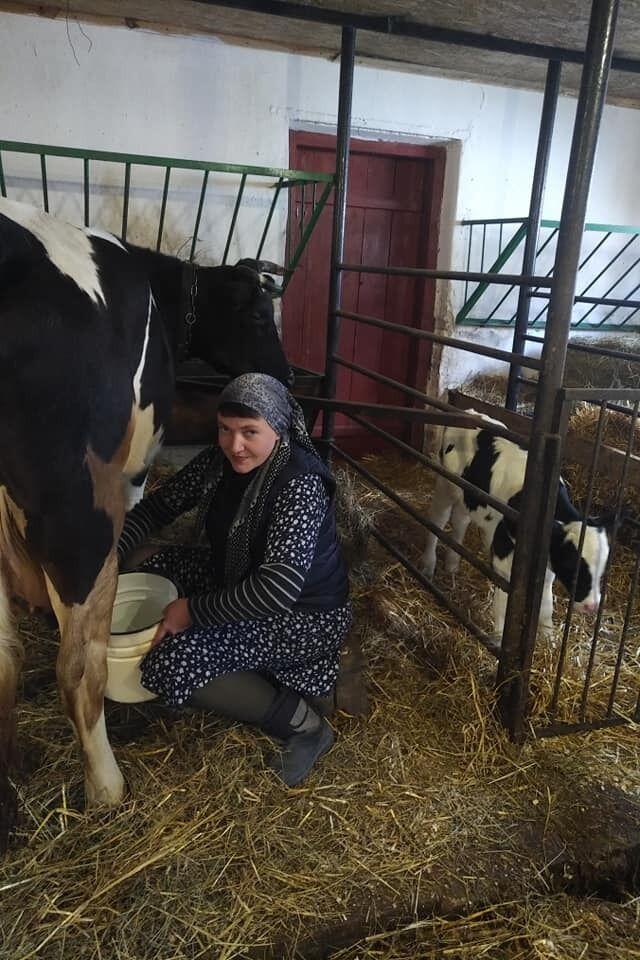 Надія Савченко показала, як доїть корову