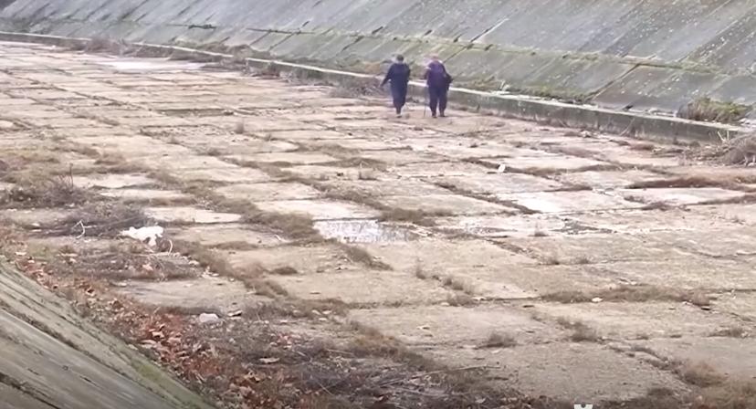 Из-за нехватки воды в части Херсонской области урожаи фермеров упали