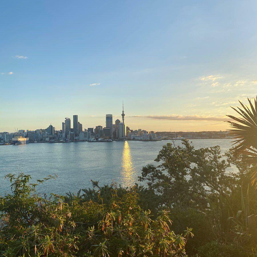 Щоб працювати за професією в Новій Зеландії, необхідно підтвердити диплом