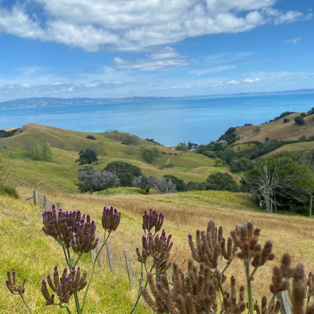 У Новій Зеландії більше позитивних факторів для життя