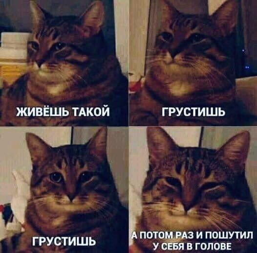 Мем о плохом настроении