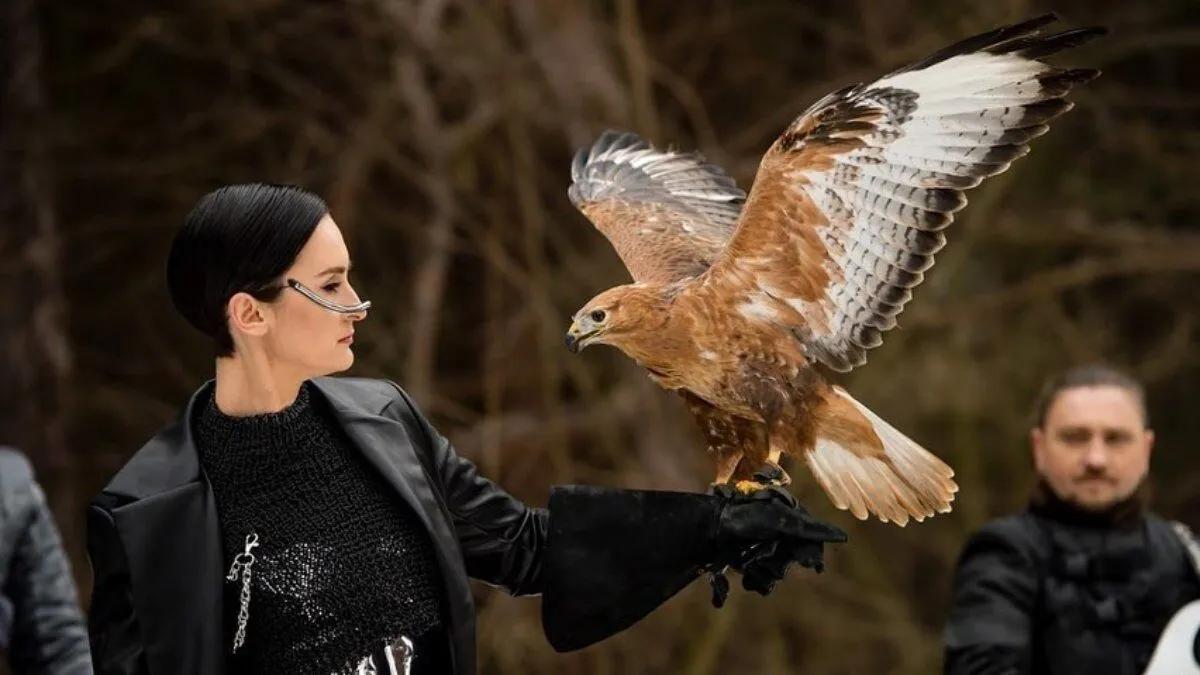 В сети возник скандал из-за того, что группа Go_A эксплуатировала птицу курганника