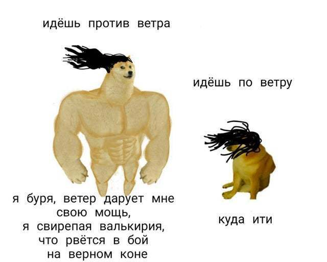Прикол про вітер