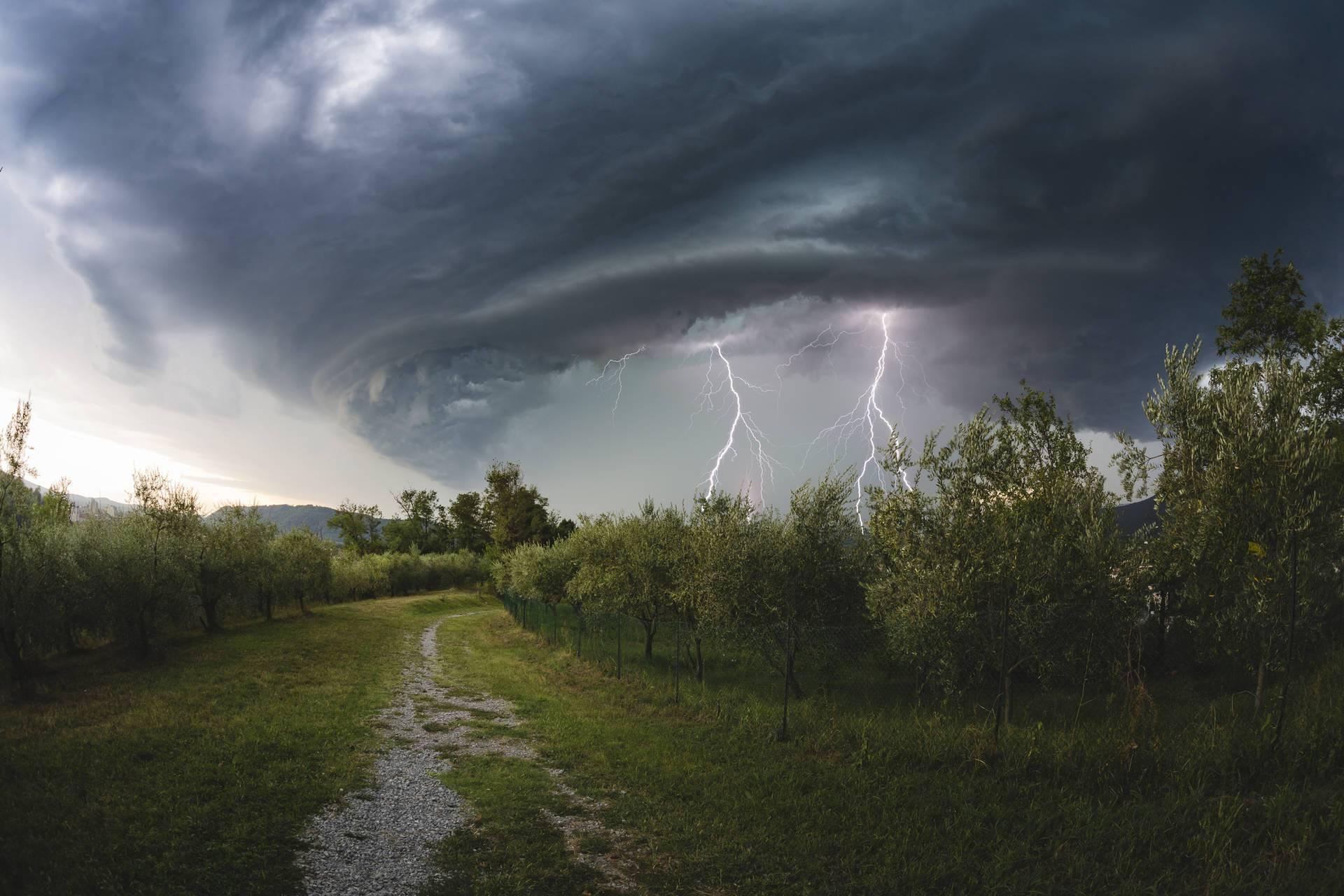 В июле в Украине ожидаются дожди и бури