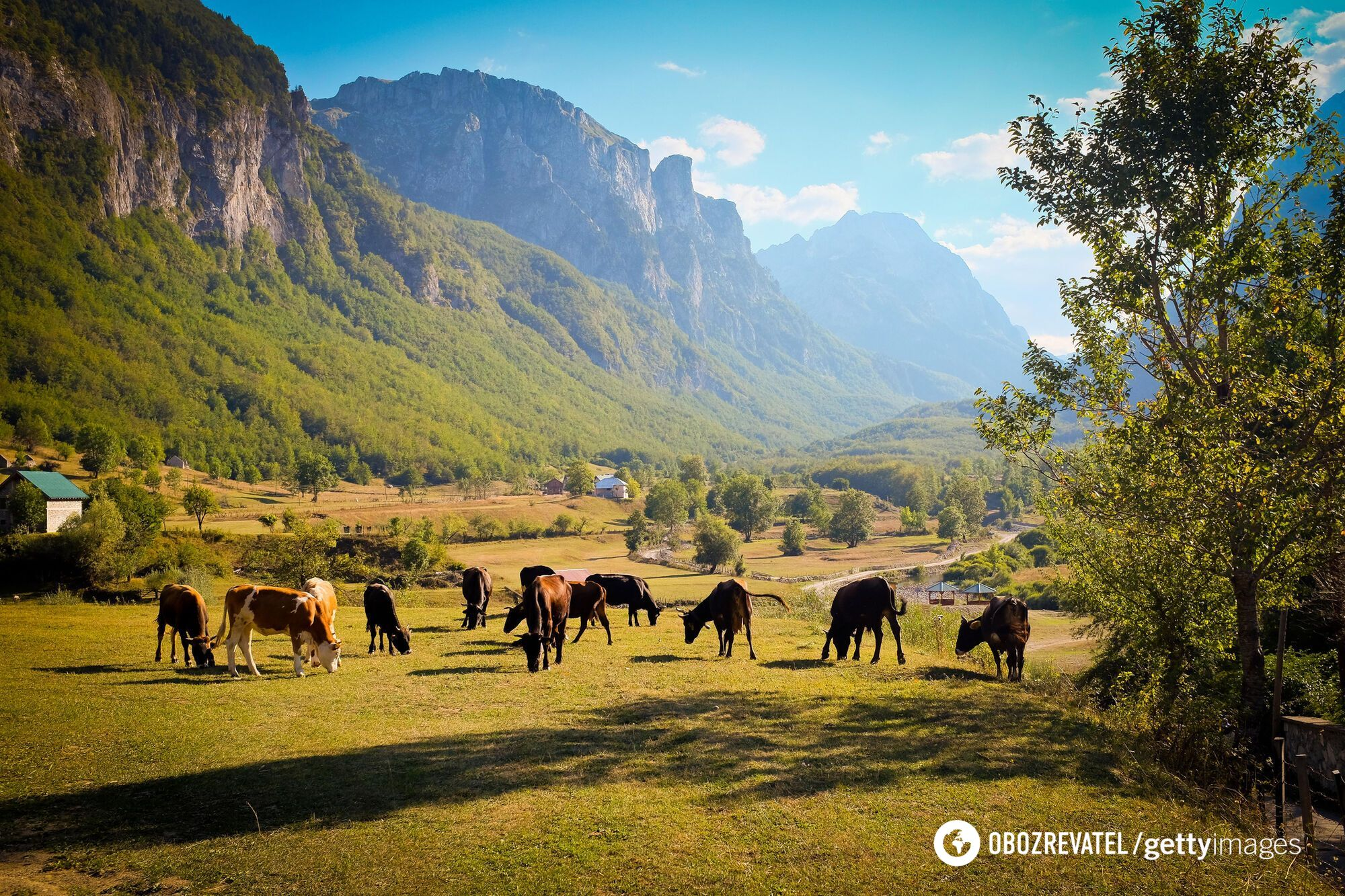 Для подорожі до Албанії не потрібен ПЛР-тест.