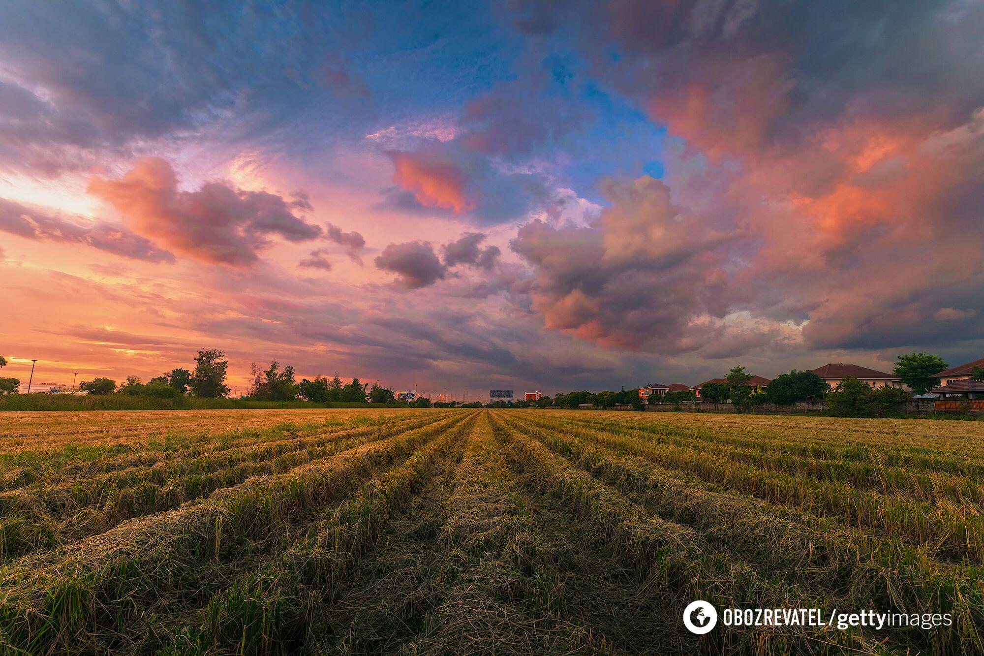 28 и 29 мая в Украине пройдут дожди.