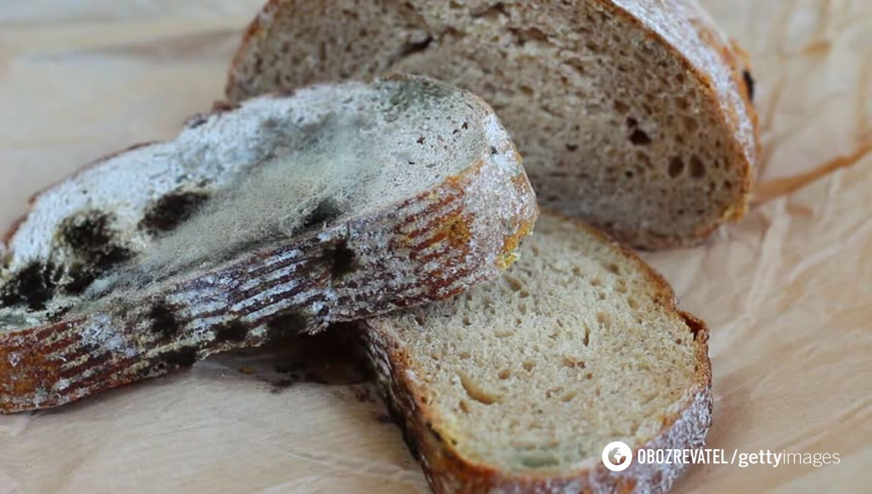Хлеб с плесенью очень опасен