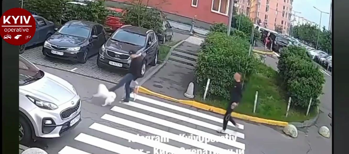 Мужчина начал отпихивать животное ногой