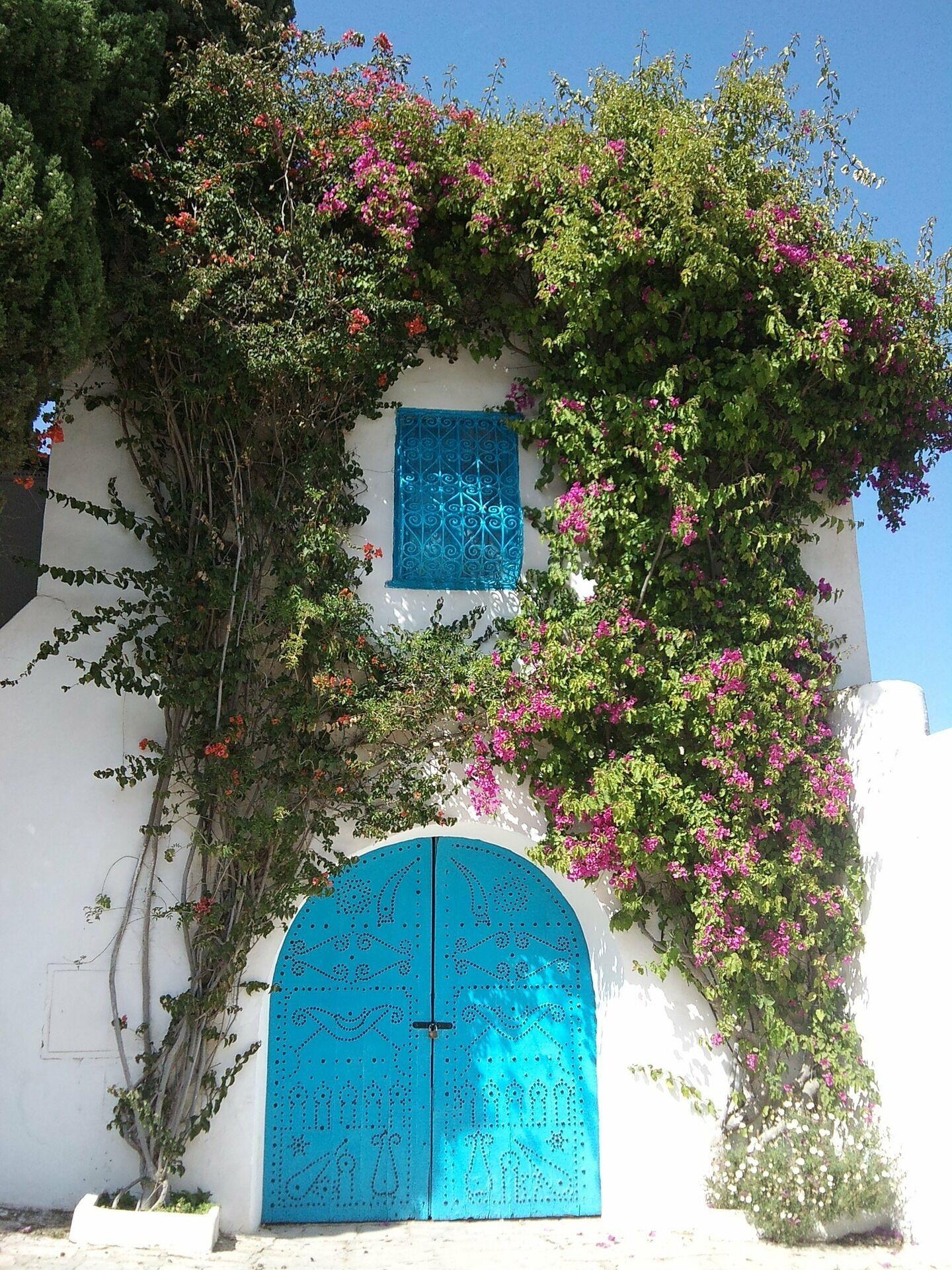 Тунис отменяет ПЦР-тесты для туристов.