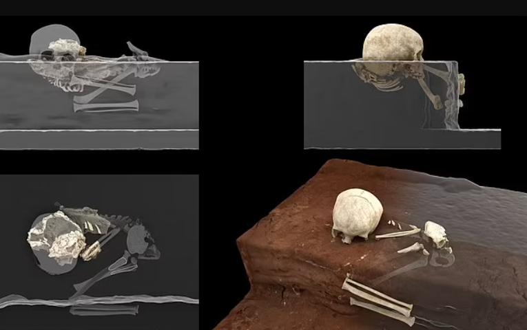 Кістки дитини в могилі