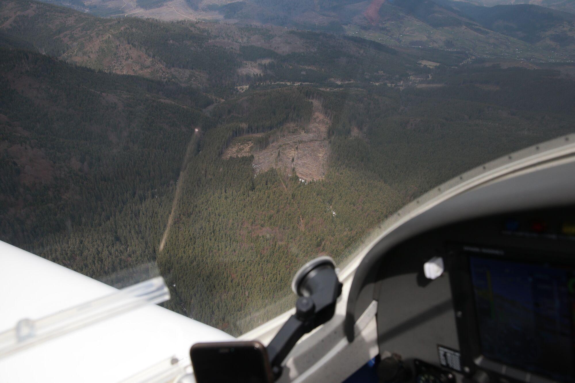 Проблема вирубки лісів дуже актуальна для Карпат