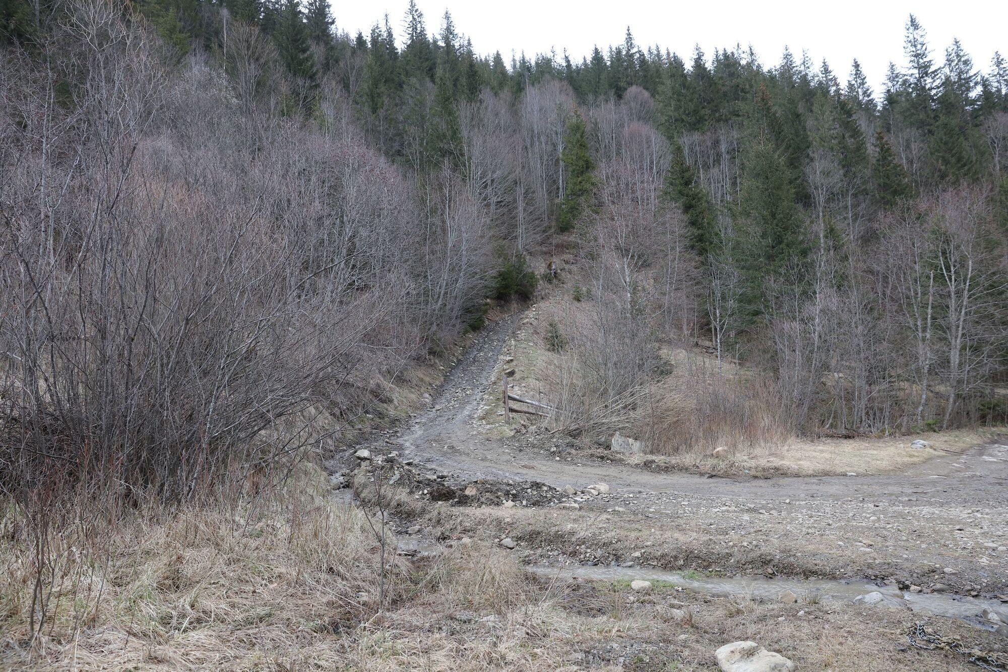 Гірська дорога на полонину.
