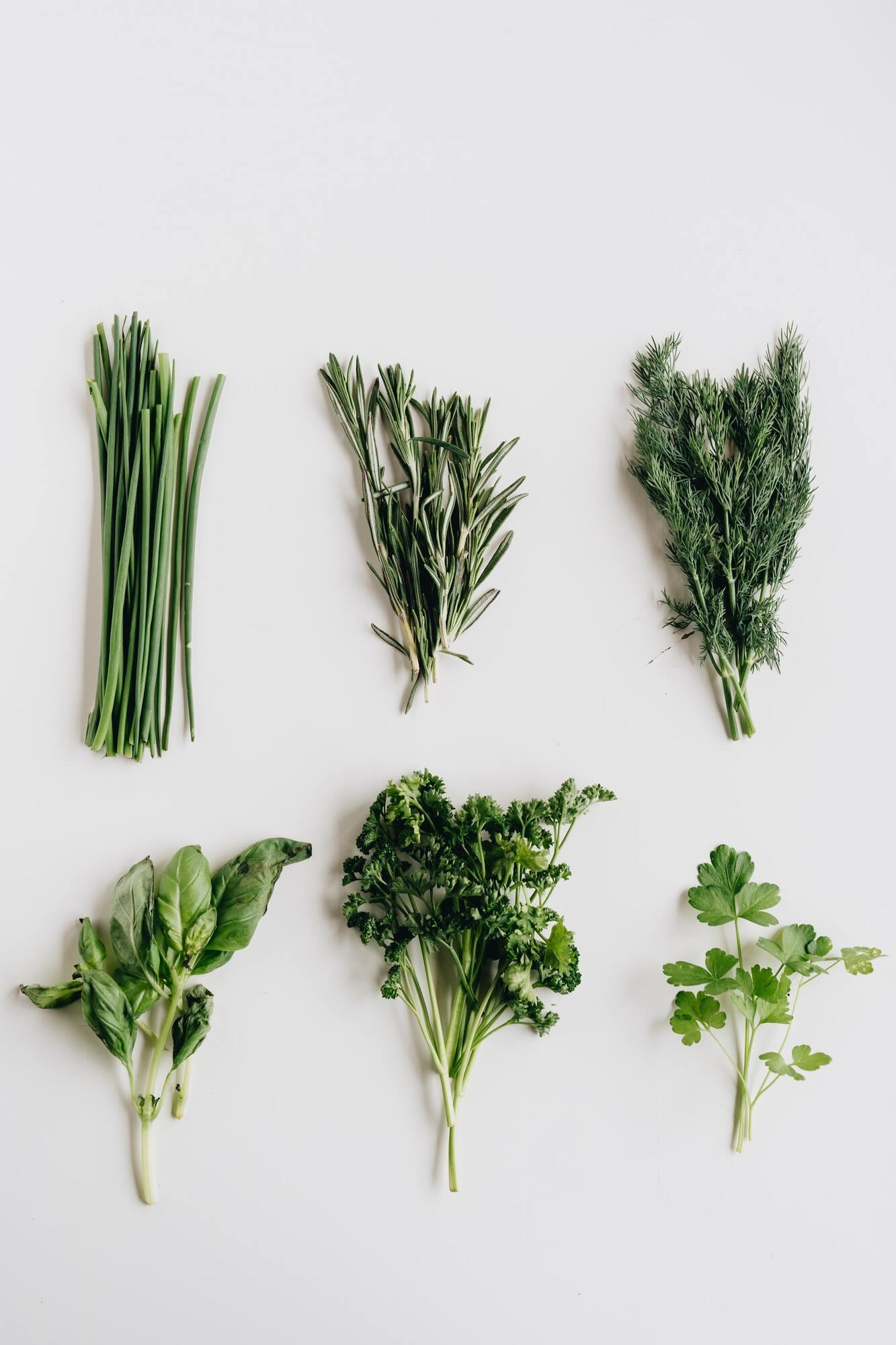 Зелень корисна для всіх