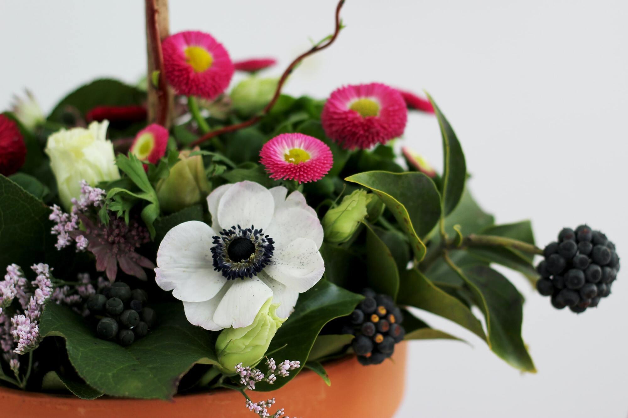 Один из вариантов подарка ко Дню матери – комнатное растение
