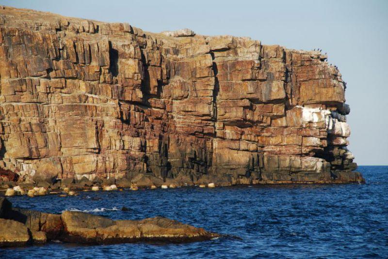 По древнегреческим сказаниям, остров Змеиный подняла с моря сама богиня Фетида