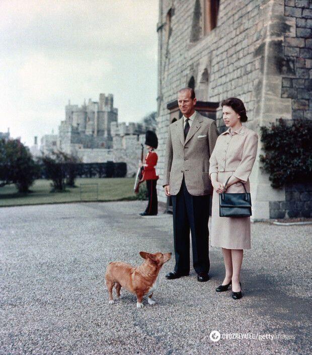 Филипп и Елизавета в Виндзорском замке с одним из королевских корги по кличке Шугар