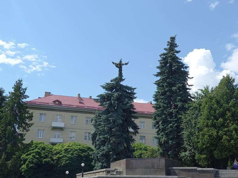 Ялинка у Луцьку