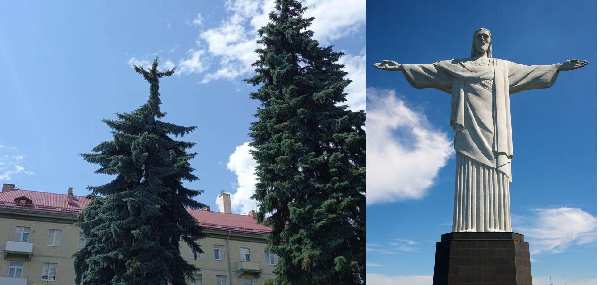 Порівняння ялинки й статуї