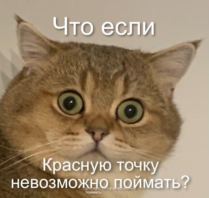 """""""Котомем"""""""