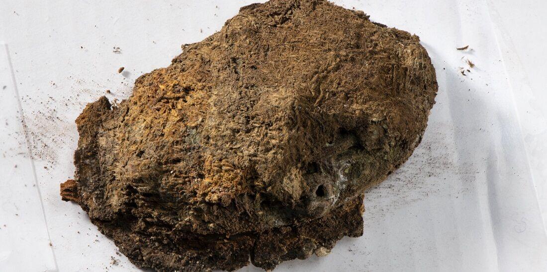 Фрагменти вишитої тканини знайдено на великій трипелюстковій брошці