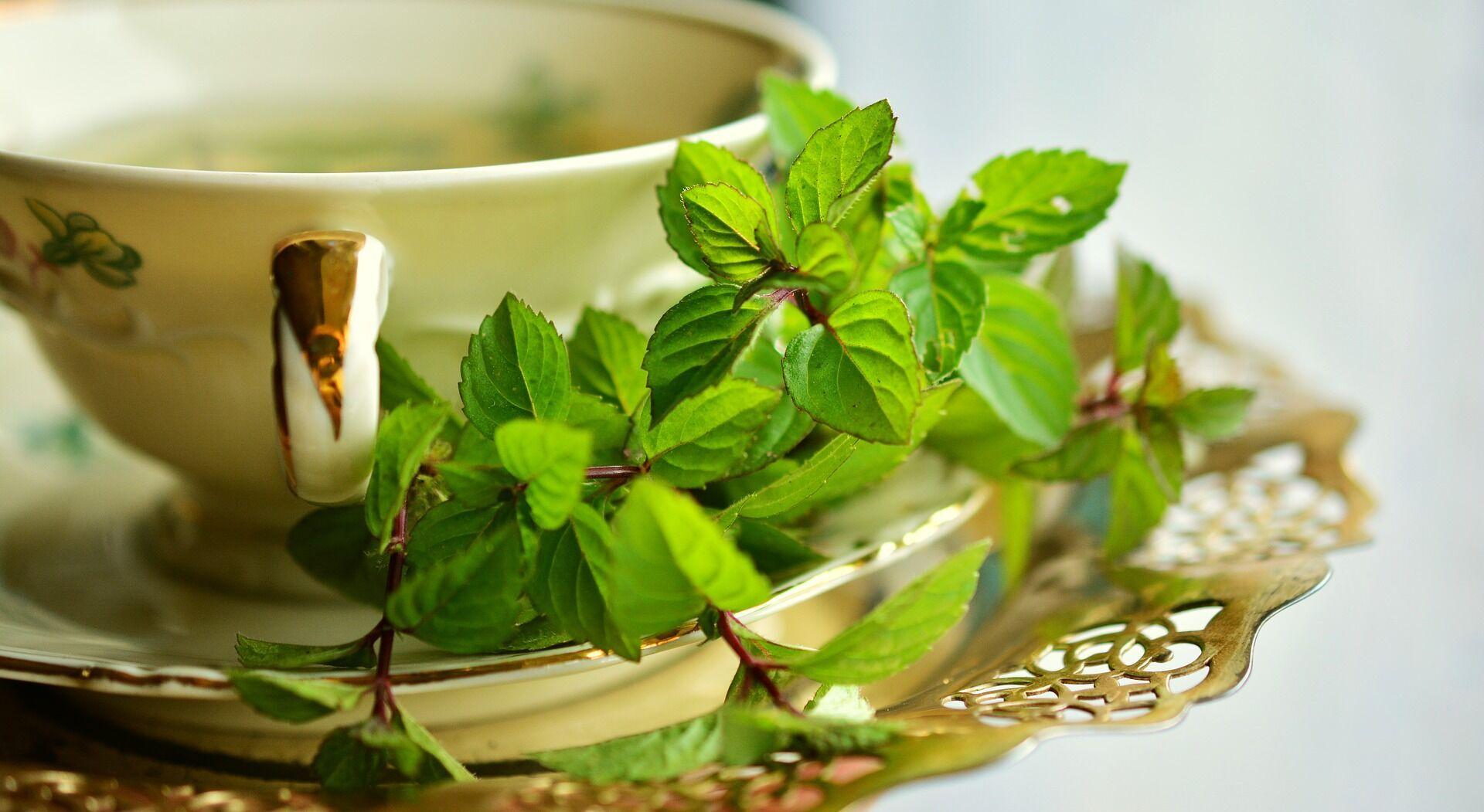 Чай с мятой и мелиссой обладает успокаивающим свойством